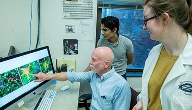 Grant Allows UM to Expand Neuroscience Education Across Multiple Colleges